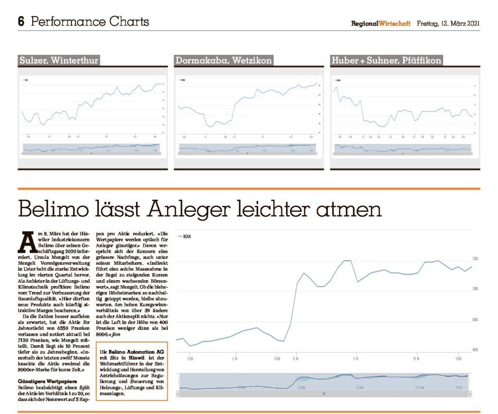 Zürich Oberland Basket Einschätzung Belimo